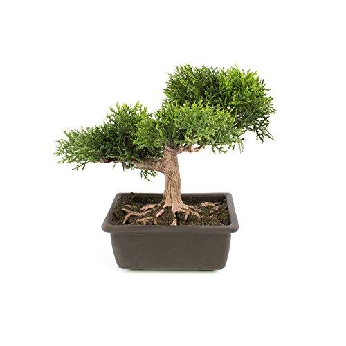 bonsi-de-cedro-artificial-en-maceta-20-cm-bonsi-decorativo-bonsai-artificial-de-alta-calidad-artplan