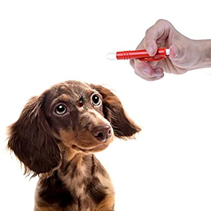 Waterstone 3PCS Tick Remover Tweezers Pet Dog Cat Rabbit Flea Puppies, Mite Acari Tick Remover Flea Eliminate Puppies… 4