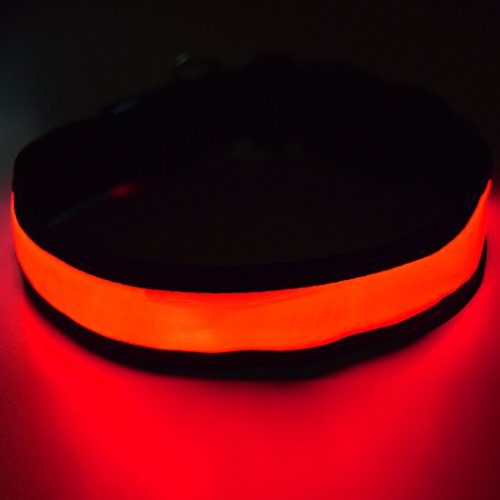 """Fun Pets Hundesicherheitshalsband mit ultraheller, wiederaufladbarer LED mit hervorragender Sichtbarkeit und erhöhter Sicherheit Groß (50cm - 60cm / 19.7"""" - 23.6"""") Rot"""