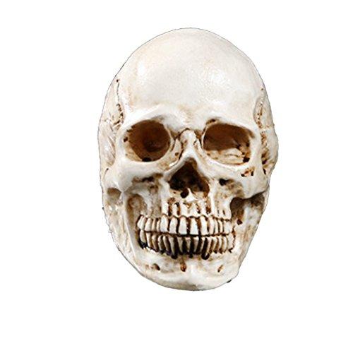 Teschio Decorativo Cranio Resina Feste Carnevale Halloween Props Beige