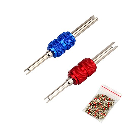 SENZEAL 2 Stücke Ventil Werkzeug Stahlwelle Doppelkopf Reifen Ventileinsatz Reparatur-Werkzeuge mit 20x Ventilkerne