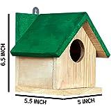 PAXI DAYA Side Window Wooden Birdhouse