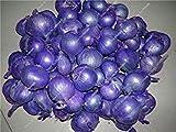 prime vista 13: Mini Zwiebel Samen Heirloom Non-GMO Gemüse Samen Seltene Bonsai Pflanze DIY Hausgarten Haushalt Küche Gewürz Lebensmittel 50 Stücke 13