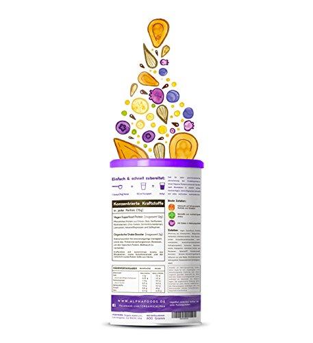 Vegan Protein (Blaubeere) - Protein aus Reis, Hanfsamen, Lupinen, Erbsen, Chia-Samen, Leinsamen, Amaranth, Sonnenblumen- und Kürbiskernen - 600 Gramm Pulver mit natürlichem Blaubeeren Geschmack - 2