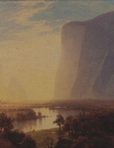 Grandeur nature : Peinture et photographie des paysages américains et canadiens de 1860 à 1918 par Hilliard T. Goldfare