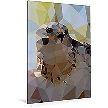 Premium Textil-Leinwand 80 cm x 120 cm  hoch, Greifvogel | Wandbild, Bild auf Keilrahmen, Fertigbild auf echter Leinwand, Leinwanddruck (CALVENDO Tiere)