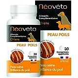 Néovéto Peau Poils comprimés naturels pour Chien à Base d'Actifs agréés par Les Services vétérinaires français, fabriqué en F