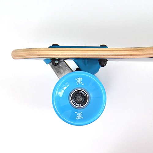 Apollo Longboard Matei Special Edition Komplettboard mit High Speed ABEC Kugellagern inkl. Skate T-Tool, Drop Through Freeride Skaten Cruiser Boards -