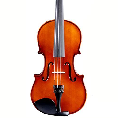 Violini Strumenti a Corda Acero Legno Strumento a Corde Full Size Pratica o Prestazioni Meraviglioso Dono di Amanti della Musica (Color : 4/4)