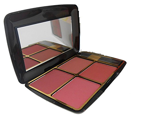 New BR Blusher Palette Travel kit with 4 shades and 1 brush