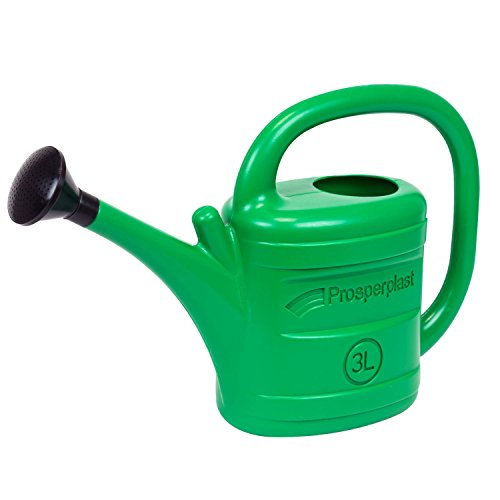 Prosper Plast iksp03-g64239,4x 12x 26,5cm primavera regadera–verde