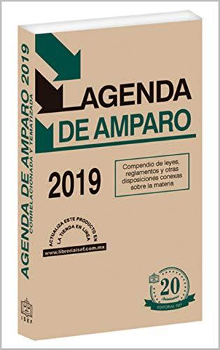 AGENDA DE AMPARO 2019 eBook: Ediciones Fiscales ISEF: Amazon ...