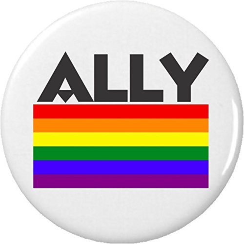 ALLY (LGBT Lesbian Gay Pride Flag) 1.25' Button Pin Straight Hetero Support