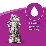 Whiskas Katzenfutter Junior für junge heranwachsende Katzen, 48 Portionsbeutel, (4 x 12 x 100 g) - 3