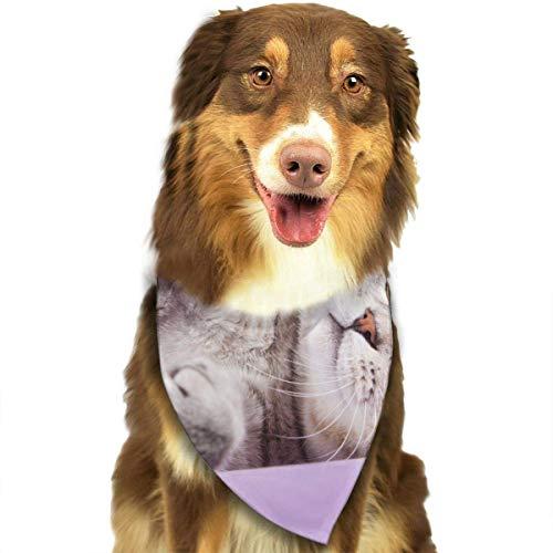 rple Pet Dog Cat Bandanas Triangle Bibs Pet Scarf Dog Neckerchief Headkerchief Pet Accessories ()