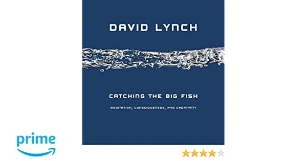 ff4a5dec339 Amazon.fr - Catching the Big Fish  Meditation