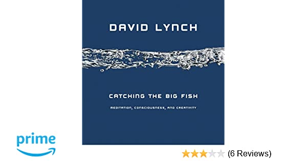 Catching The Big Fish: Meditation, Consciousness And Creativity: Amazon.de:  David Lynch: Fremdsprachige Bücher