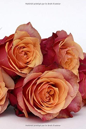 Carnet de Notes: Petit journal personnel de 121 pages blanches avec couverture « Roses - Chausson de