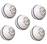 #8: PSE Priya Sports Leather Club Cricket Ball White Pack of 5 (2Part)