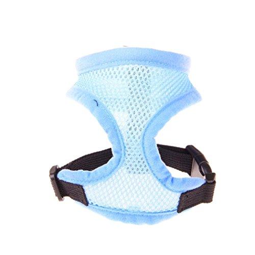 Komfort Soft Breathable Hundegeschirr Verstellbare Haustier Weste Seil Hund Brust Gurt Leine Set Kragen (S, Blau) -