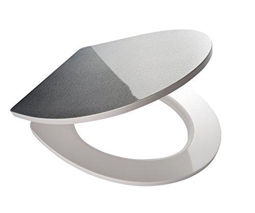 RIDDER 02204100WC-Sitz Danzig mit Soft-Schließ-System, Fixing, klicken und Reinigen, Bremskörper aus Kunststoff, Silber, 45,7x 39x 5,2cm