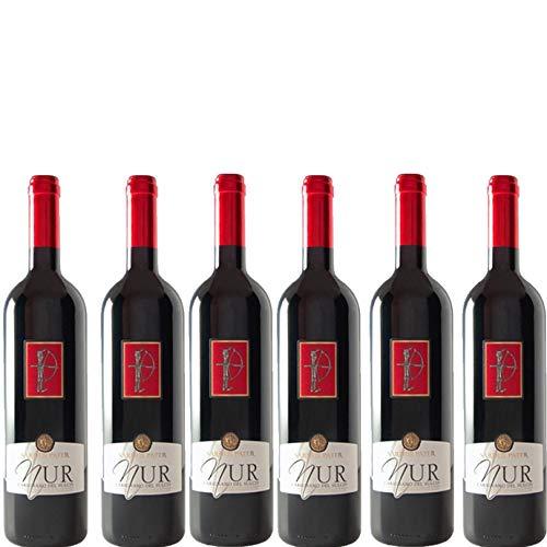 6 bottiglie per 0,75l -NUR - CARIGNANO DEL SULCIS DOC