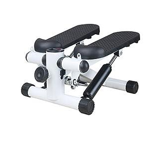 41o2MxMj6vL. SS300  - Havanadd Mini Fitness Swing Stepper, Fitness Equipment Portable Silent Multi-function Mini Steel Material,