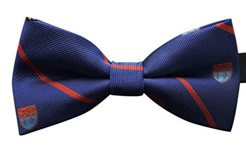 Panegy - Nœud Papillon - Cravate Lavallière - Homme Accessoire Déco pour Soirée Businesse Mariage Cérémonie Fête Costume Necktie - 23 Couleurs Disponible Bleu à Rayure