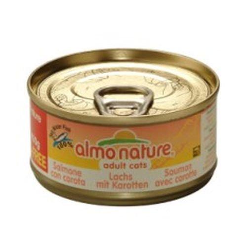 Umido Gatto Almo Nature gr70, Salmone con Carota