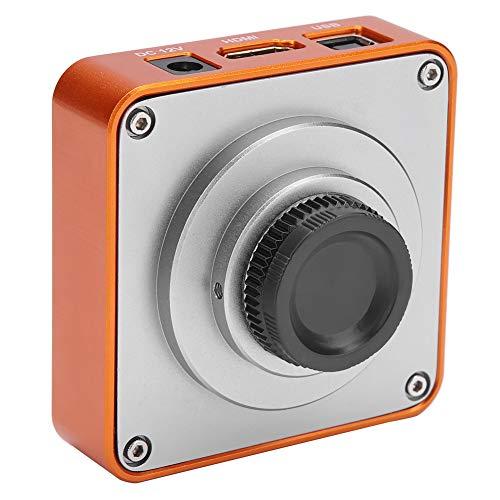 Mikroskop Kamera Set, HDMI USB C-Mount Industrie Mikroskop Kamera 21MP CMOS-Sensor 2K 1080P HD Videokamera Unterstützt bis zu 64 GB TF-Karte, 220V C-mount-kamera