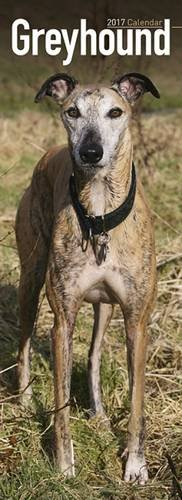 greyhound-slim-calendar-2017-slim-standard