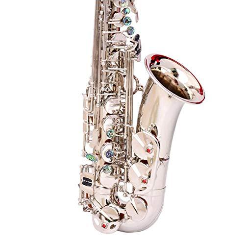 LVSSY-Silbernes Alt Saxophon Eb Abalone Shell Keys Mit Tragekoffer Handschuhe Reinigungstuch - Silber Vernickelt