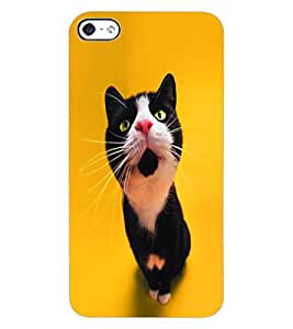 ColourCraft Cute Cat Design Back Case Cover for APPLE IPHONE 4S