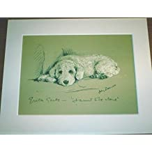 POODLE DOG Rare Lucy Dawson 1937 dog print bookplate Unique Gift Christmas