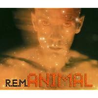 Animal (3 Canzoni - 1 Versione)