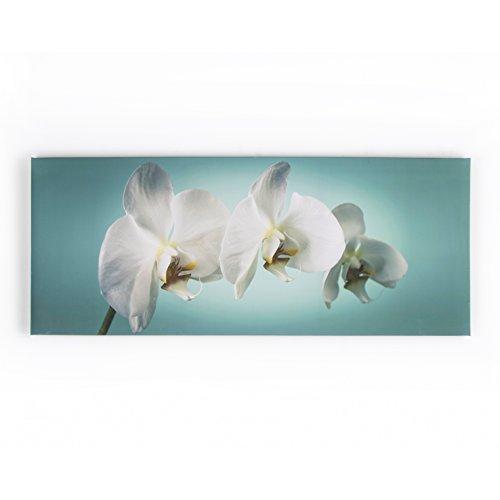 Cuadro de flores de diseño de orquídeas