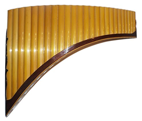 Professionelle 25Rohre Tenor Pan Flute-F, 'awary-Fall enthalten -