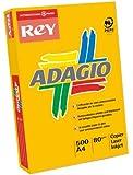 Papyrus Adagio+ Ramette de 500 feuilles papier couleur pour imprimante laser/jet d'encre/copieur 80g Format A3 Bleu intense