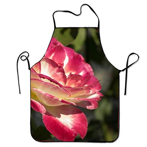 dfhdshsd White and Pink Rose Blossom Kitchen Cooking Apron for Women and Men Adjustable Neck Strap Restaurant Home Kitchen Apron Bib for Cooking, BBQ -