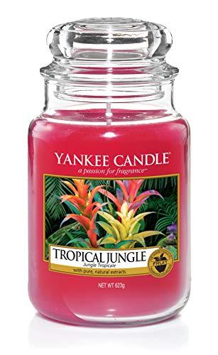 Yankee Candle Tropical Jungle Classique Signature Bocal Grande 623g–Sûr pour Correspondance Box