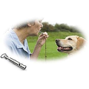 Sijueam Lot de 2 Sifflet à ultrason pour Dressage de chiens chats Animaux Rappel Entrainement Chasse Éducation Comportement du chien tonalité réglable anti-perte
