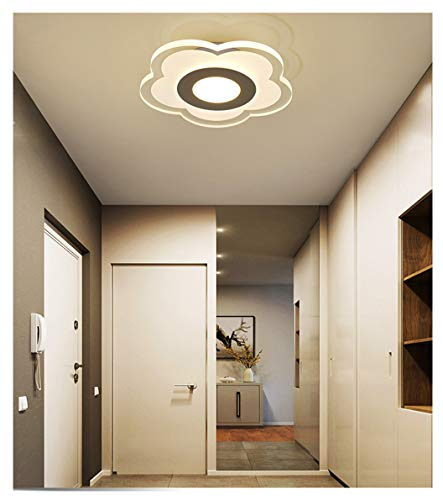 LED Deckenlampe 7.9-Zoll Acryl Deckenleuchte/Transparente Wandleuchten Modern Kreativ Wohnzimmer-Lampe, Geeignet für Flure, Balkone, Foyers, Deckenstrahler. (8320-C (white light)) -