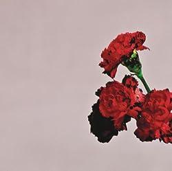 John Legend | Format: MP3-DownloadVon Album:Love In The Future (Deluxe Edition)(61)Download: EUR 1,29