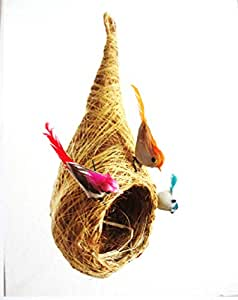 STE Coir Craft Bird NEST for Home Terrace Balcony Garden Decor, 25 cm (Multicolour)
