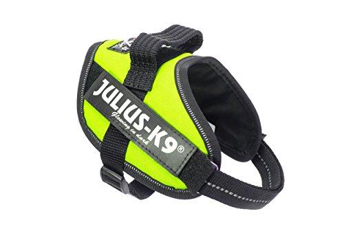 Julius-K9, 16IDC-FNE-MM, IDC-Powergeschirr, Hundegeschirr, Größe: Mini-Mini, UV neon grün