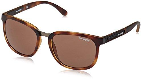 Arnette Herren Sonnenbrille 0AN4238 237573, Braun (Matte Dark Havana/Brown), 55 Preisvergleich