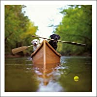 Woodmansterne Blank / Birthday Greeting Card - Labradors In A Boat (9776)
