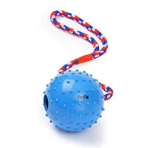PetPäl Ball mit Seil Naturkautschuk | WurfballHundespiel-Ball mit Schnur |...