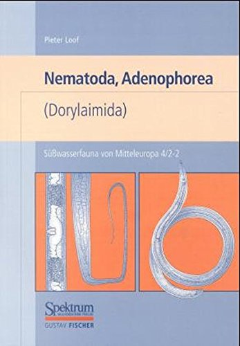 Süßwasserfauna von Mitteleuropa, 21 Bde., Bd.4/2-1, Nematoda, Adenophorea (Dorylaimida)
