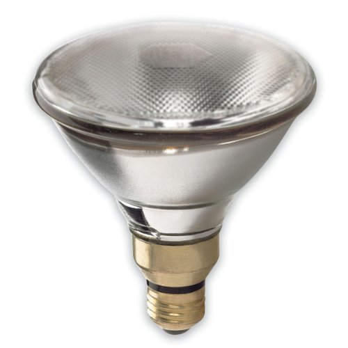 GE LIGHTING 48037150-watt 1700-lumen Outdoor Flutlicht saf-t-gard Glühlampe, klar (120v Bulbs Ge Light)